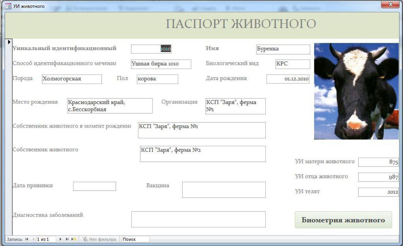 """Террористы """"ЛНР"""" начали выдавать свои """"паспорта"""" - Цензор.НЕТ 5585"""